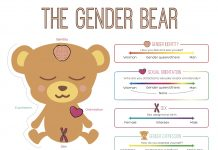 The Gender Bear Spectrum