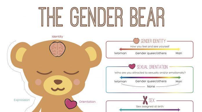 The Gender Bear Spectrum